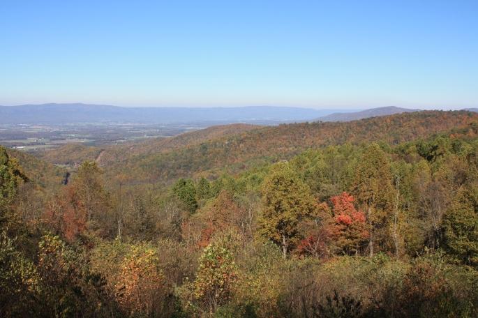 Shenandoah Fall Colors
