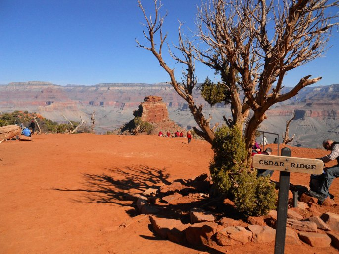 South Kaibab View 2