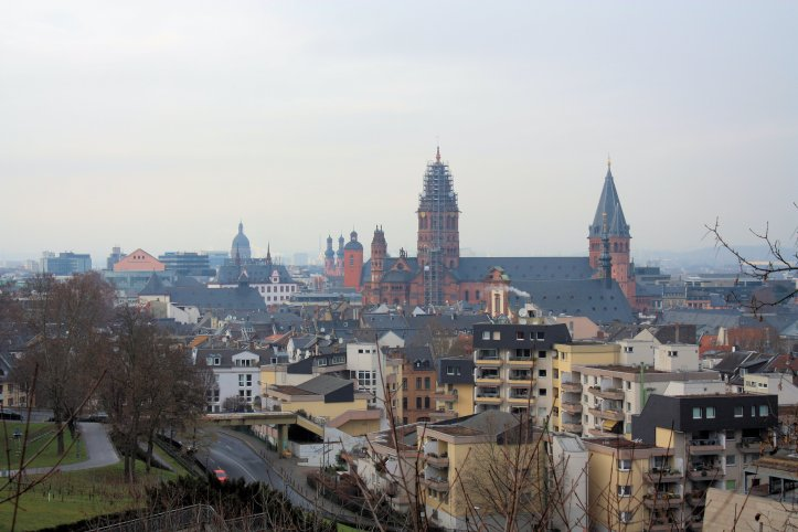 Mainz from the Citadel