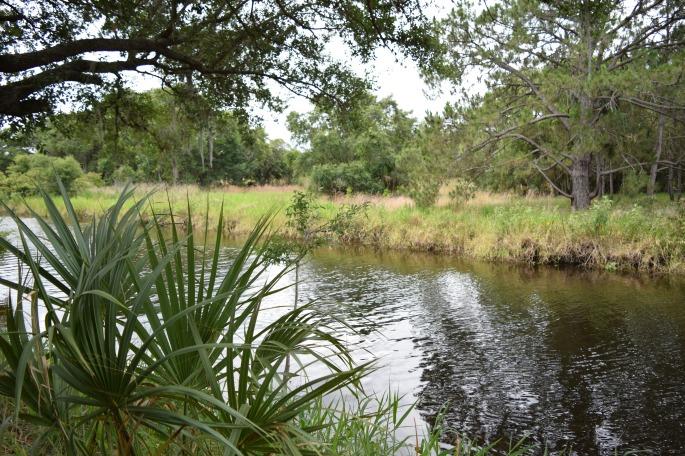 Lake Kissimmee FL State Park (16)