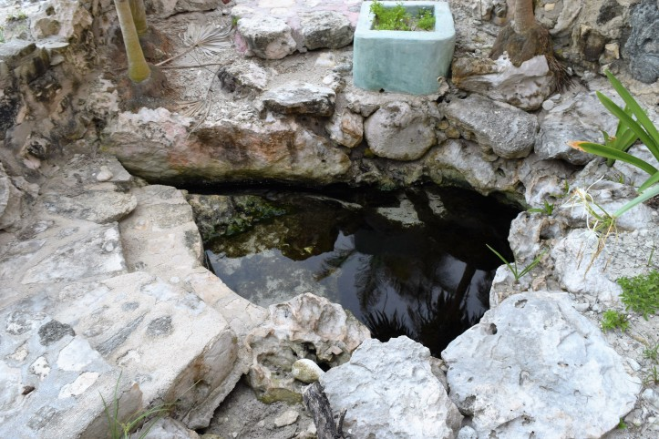 zamas-little-cenote